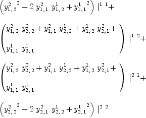 \label{eq53}\begin{array}{@{}l} \displaystyle {{\left({{y_{1, \: 2}^{2}}^{2}}+{2 \ {y_{1, \: 1}^{2}}\ {y_{1, \: 2}^{1}}}+{{y_{1, \: 1}^{1}}^{2}}\right)}\ {|_{\ }^{1 \  1}}}+  \ \ \displaystyle {{\left({ \begin{array}{@{}l} \displaystyle {{y_{1, \: 2}^{2}}\ {y_{2, \: 2}^{2}}}+{{y_{1, \: 1}^{2}}\ {y_{2, \: 2}^{1}}}+{{y_{1, \: 2}^{1}}\ {y_{2, \: 1}^{2}}}+  \ \ \displaystyle {{y_{1, \: 1}^{1}}\ {y_{2, \: 1}^{1}}}